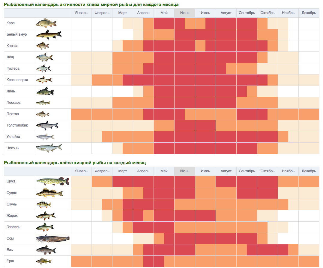 Календарь рыболова календарь клева лунный календарь рыбака клев и фаза луны календарь рыбной ловли информер.